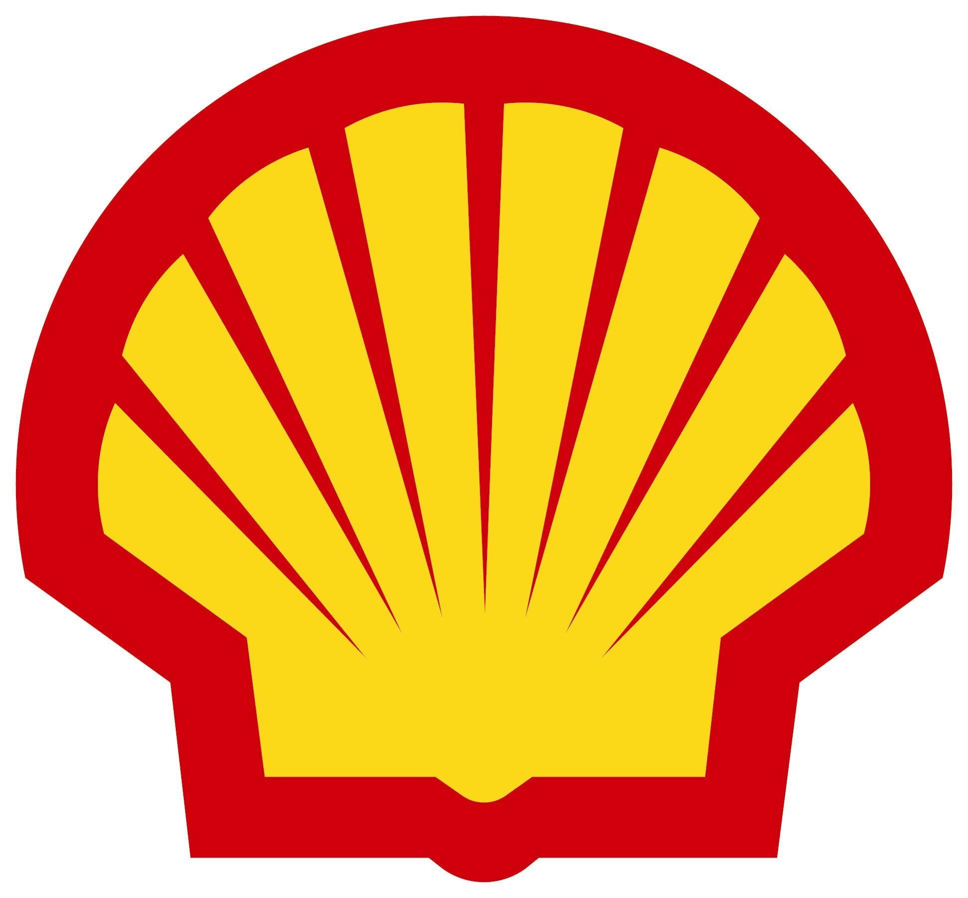 shell.jpg - large